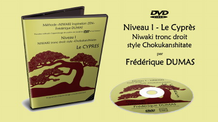dvd video formation interactive niwaki taille japonaise véritable authentique