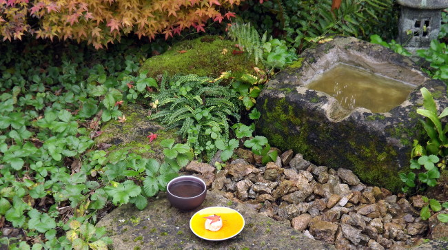 jardin de thé, chaniwa, jardin japonais