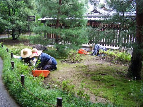 women garden japanese garden Japan landscape creation