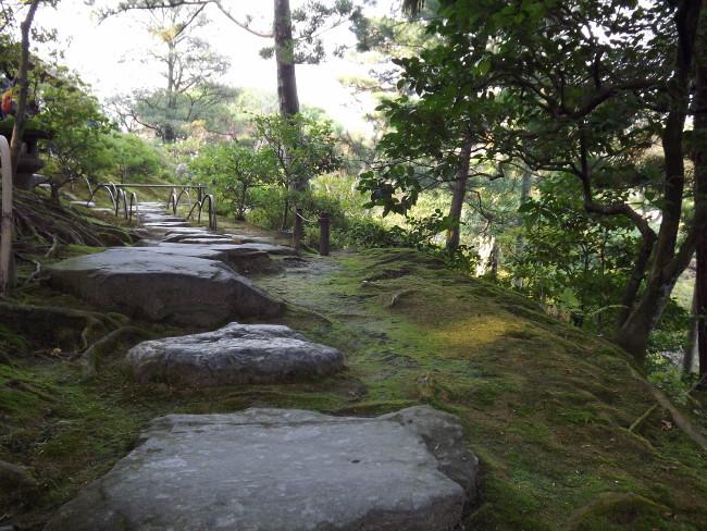 niwaki et jardins japonais authentiques - frederique dumas