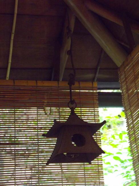 niwaki taille japonaise hortitherapie niwatherapie jardins japonais frederique dumas jardin shizen no sei voyage d'etudes au japon