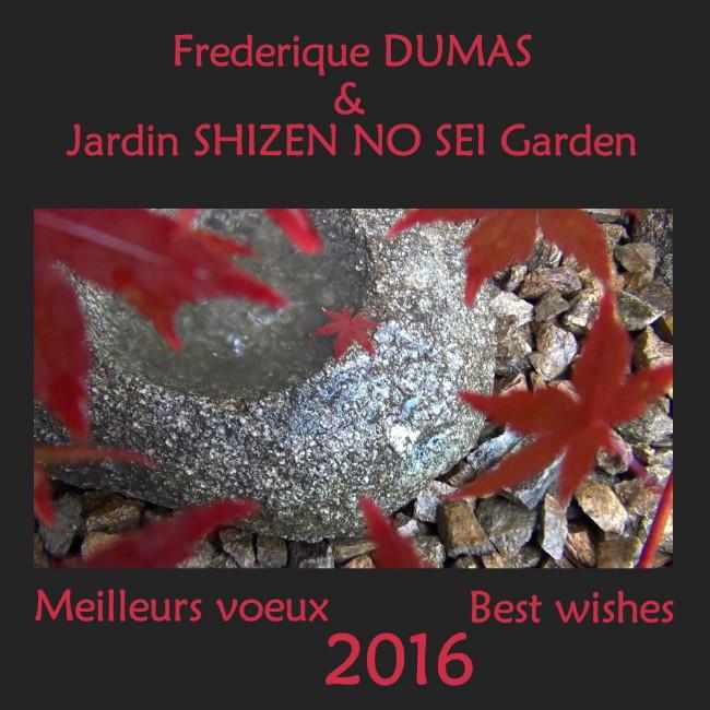 niwaki taille japonaise hortitherapie jardins japonais frederique dumas jardin shizen no sei