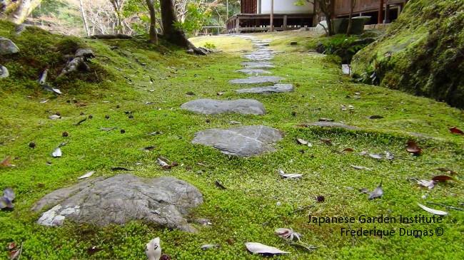 study tour japan spiritual japan niwaki tour initiatory awareness japanese garden niwaki personal evolution
