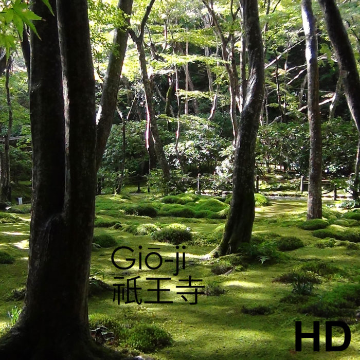 Video du jardin Giō-ji - Kyoto - Frederique Dumas www.japanese-garden-institute.com www.frederique-dumas.com