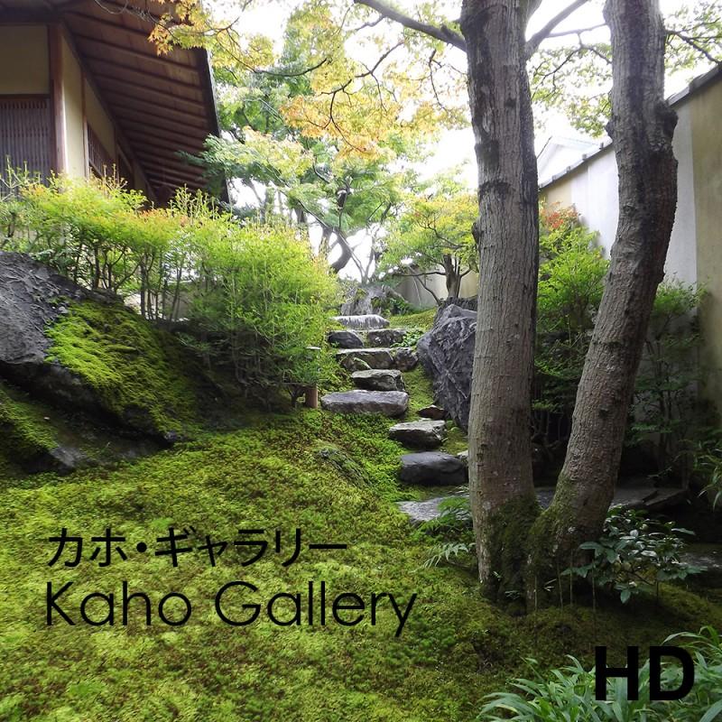 Video de la galerie Kaho - Kyoto - Frederique Dumas www.japanese-garden-institute.com www.frederique-dumas.com