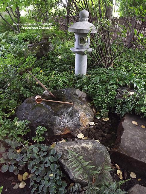 Stages niwaki et jardins japonais - pole formation amerique du nord - Frederique Dumas www.japanese-garden-institute.com www.frederique-dumas.com