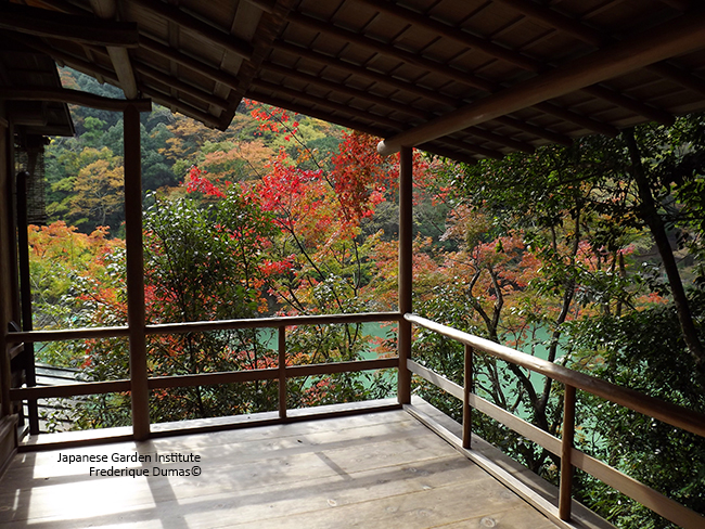 Spiritual Japan niwaki tour - study tour in Japon - Frederique Dumas www.japanese-garden-institute.com www.frederique-dumas.com