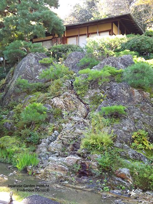 Spiritual Japan niwaki tour - voyage d'études au Japon - Frederique Dumas www.japanese-garden-institute.com www.frederique-dumas.com