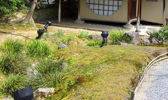 Académie Sublime Sukiya - niwaki et jardins japonais - Frederique Dumas www.japanese-garden-institute.com www.frederique-dumas.com