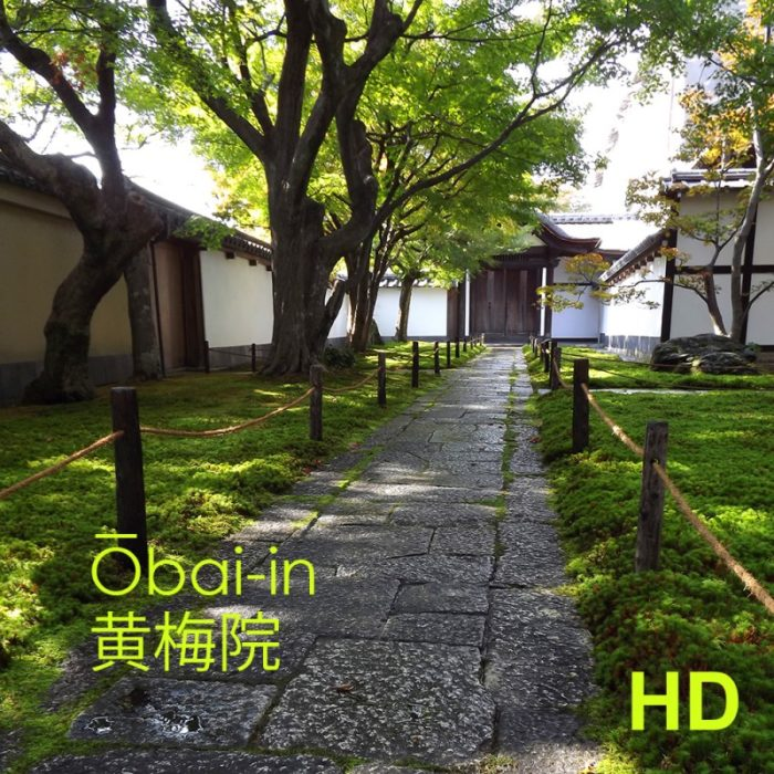 Video Ōbai-in - jardin de thé - Kyoto - Frederique Dumas www.japanese-garden-institute.com www.frederique-dumas.com