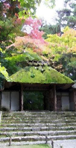 zen, jardin, secateur, outil, japonais, taille, niwaki, scie elagage, housse cuir, cisaille, tsuboniwa, chaniwa, karesansui, ficelle, noire, brune
